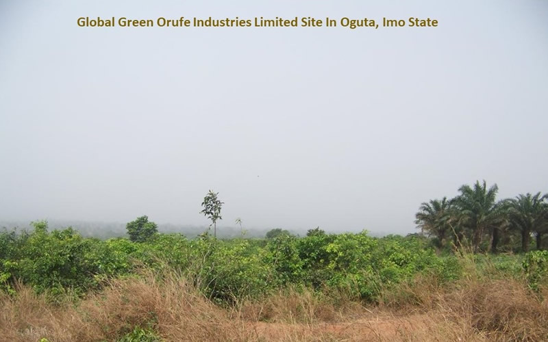 Global Green Orufe Industries Site In Oguta, Imo State