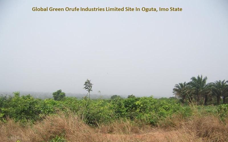 Global Green Orufe Industries Site In Oguta, Imo State